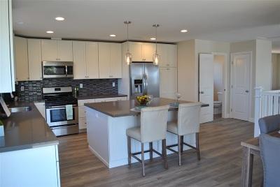 Ocean Side, Oceanside Single Family Home For Sale: 2259 View Street