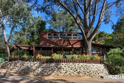 Del Mar Single Family Home For Sale: 461 Hidden Pines Ln