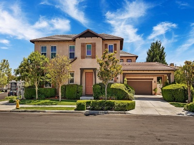 Temecula Single Family Home For Sale: 28859 Springfield Place