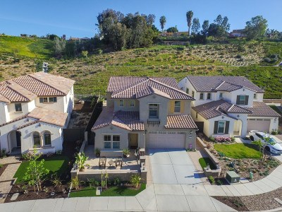 Single Family Home For Sale: 237 Flores Lane