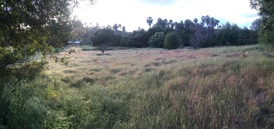 San Diego County Residential Lots & Land For Sale: Highgrove Dr #.