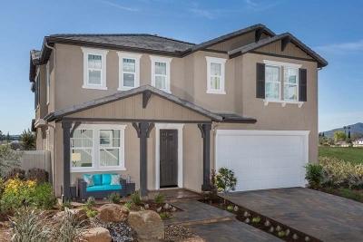 Single Family Home For Sale: 10689 Braverman Dr