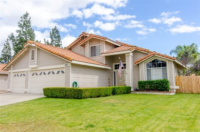 Temecula Single Family Home For Sale: 29711 Waynewood Dr