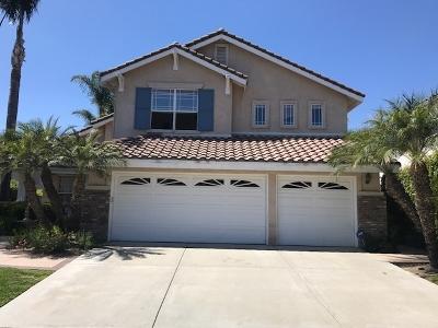 Oceanside,  Carlsbad , Vista, San Marcos, Encinitas, Escondido, Rancho Santa Fe, Cardiff By The Sea, Solana Beach Rental For Rent: 3364 Avenida Nieve