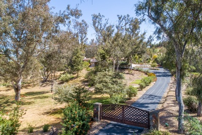 Rancho Santa Fe Single Family Home For Sale: 16207 El Camino Real