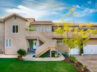 Single Family Home For Sale: 3956 Pala Mesa Dr