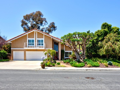 Solana Beach Single Family Home For Sale: 971 San Lorenzo Court