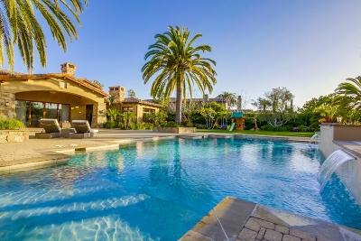 Rancho Santa Fe Single Family Home For Sale: 15852 The River Trail