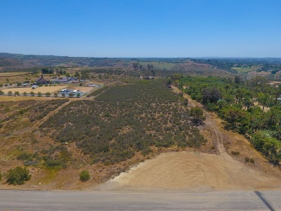 San Diego Residential Lots & Land For Sale: 10 Acres Artesian Road #04