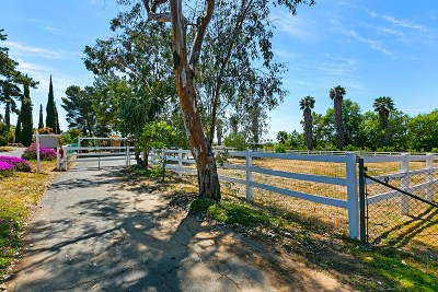 San Diego County Single Family Home For Sale: 9421 W Lilac