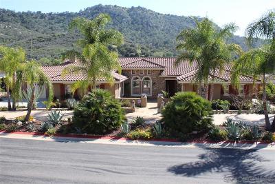 Valley Center Single Family Home For Sale: 14737 Interlachen Ter