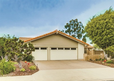 Solana Beach Single Family Home For Sale: 1128 Santa Rufina Ct