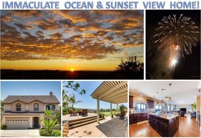 San Marcos Single Family Home For Sale: 840 Via Barquero