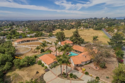 San Diego County Single Family Home For Sale: 993 El Paisano Dr