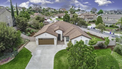 San Marcos Single Family Home For Sale: 721 Banyan Ct