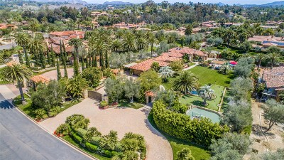 Rancho Santa Fe Single Family Home For Sale: 15823 The River Trail