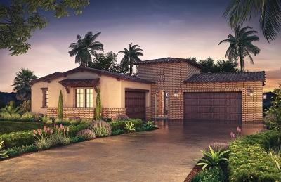 Encinitas Single Family Home For Sale: 3849 Rancho Summit