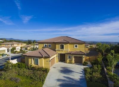 Oceanside Single Family Home For Sale: 1041 Village Dr