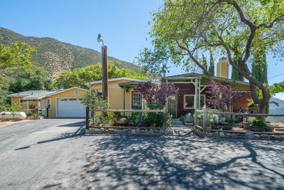 San Diego County Single Family Home For Sale: 248 Highway 78