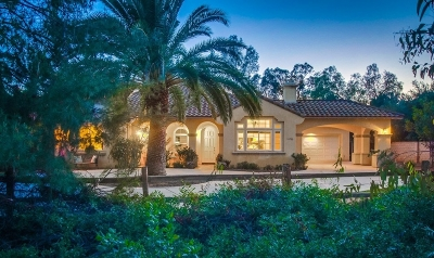 Poway Single Family Home For Sale: 16780 Martincoit Rd