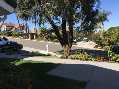 Carlsbad CA Rental For Rent: $1,875