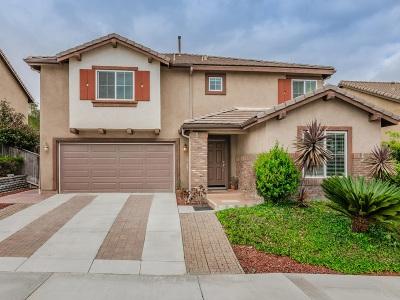 San Marcos Single Family Home For Sale: 1625 Pegasus Way