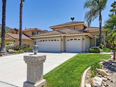 el cajon Single Family Home For Sale: 3113 Camino De Las Piedras