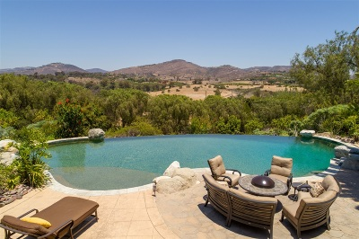 Rancho Santa Fe Single Family Home For Sale: 17571 El Vuelo
