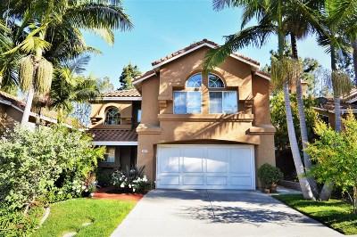 Carlsbad Single Family Home For Sale: 3457 Camino Valencia