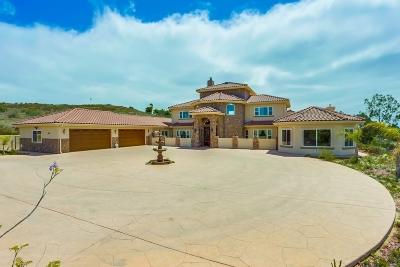 Fallbrook Single Family Home For Sale: 413 Bonita Valle