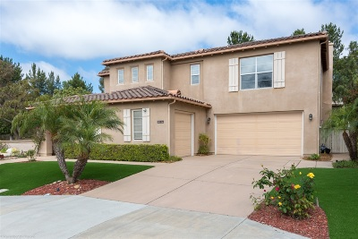 Single Family Home For Sale: 11239 Vandemen Way