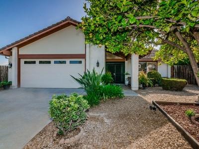 Escondido Single Family Home For Sale: 2045 Camino