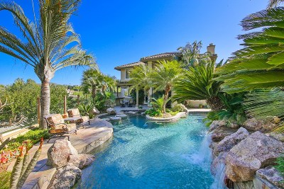 Escondido Single Family Home For Sale: 1334 Emeraude Gln