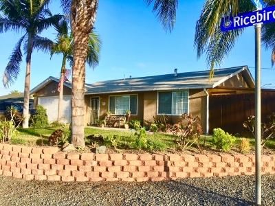 Vista Single Family Home For Sale: 524 Ricebird Dr