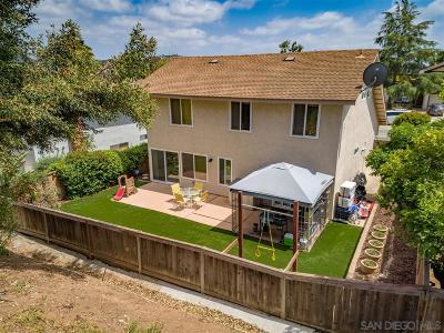 Escondido Single Family Home For Sale: 262 Skyridge Lane