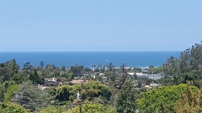 Encinitas CA Single Family Home For Sale: $1,575,000