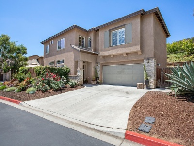 Escondido Single Family Home For Sale: 8948 Courtyard View Dr.