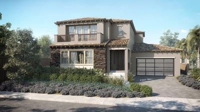 Carlsbad Single Family Home For Sale: 1020 Camino De Las Ondas