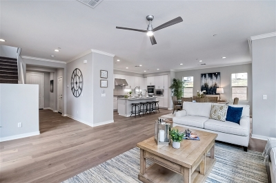 Carlsbad Single Family Home For Sale: 1030 Camino Del Las Ondas
