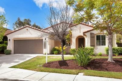 Chula Vista Single Family Home For Sale: 2412 S Trail Ct