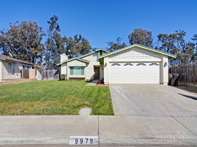 Single Family Home For Sale: 9979 Kibler Drive