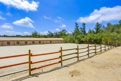 Valley Center Single Family Home For Sale: 18928 Paradise Mountain Rd