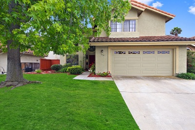 Vista Single Family Home For Sale: 1939 White Birch Drive