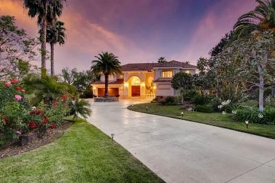 Rancho Santa Fe Single Family Home For Sale: 14327 Twin Lakes Ct