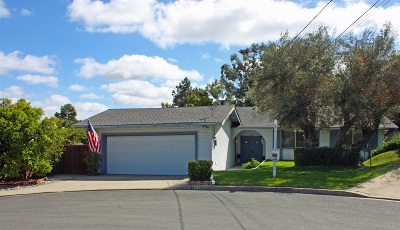 Vista Single Family Home For Sale: 145 Bellerive Ct.