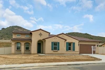 Vista Single Family Home For Sale: 1710 Lemonadeberry Lane