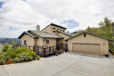 Escondido Single Family Home For Sale: 29049 N View Ln