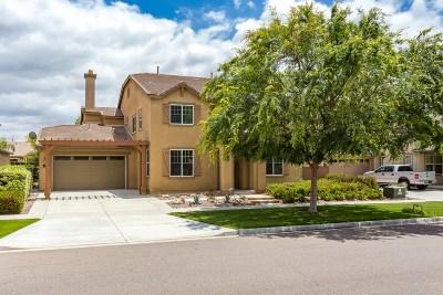 Escondido Single Family Home For Sale: 433 Eureka Dr
