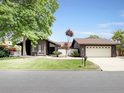 Vista Single Family Home For Sale: 1022 Silver Stallion Drive
