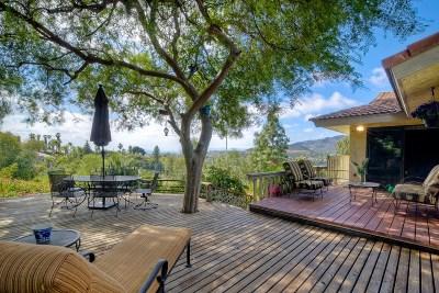 Vista Single Family Home For Sale: 3713 Buena Creek